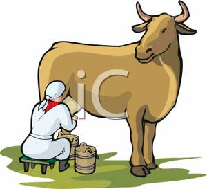 Woman Sitting on a Stool To Milk a Cow Clipart Image.
