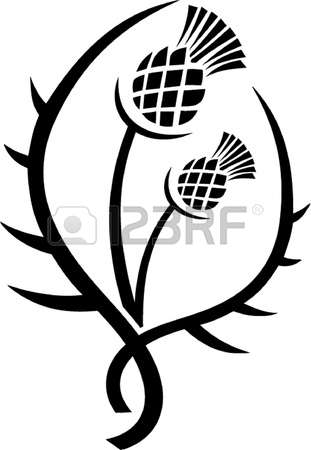 149 Milk Thistle Stock Vector Illustration And Royalty Free Milk.