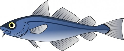 Milkfish clipart 4 » Clipart Station.