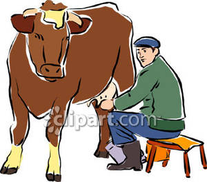 Milking A Brown Cow.