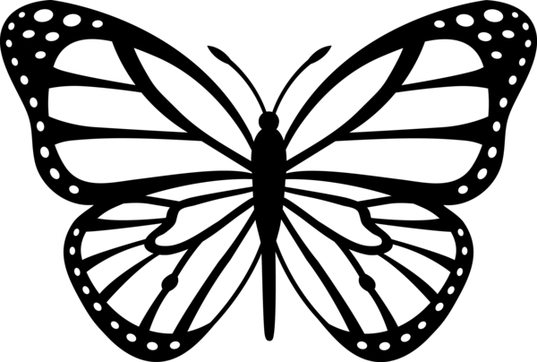 1000+ images about black monarch butterfly tattoos on Pinterest.
