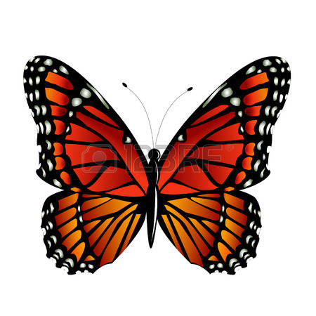 10,284 Monarch Stock Vector Illustration And Royalty Free Monarch.