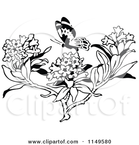 Clipart of a Retro Vintage Black and White Butterfly and Milkweed.