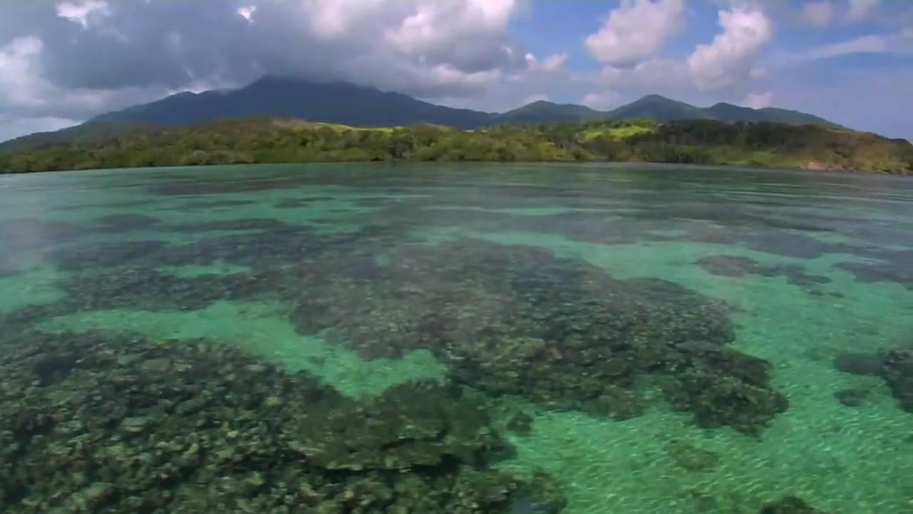 Experience Milne Bay.