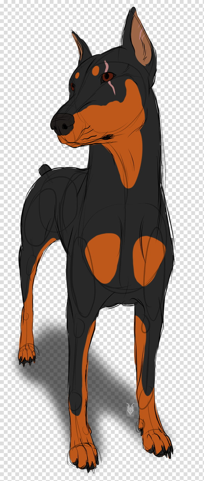 Cartoon Dog, Pinscher, Guard Dog, Miniature Pinscher, Breed.