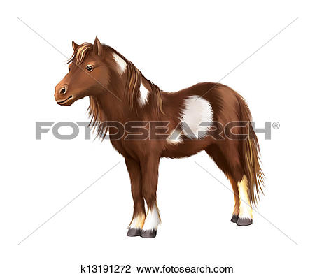 Clip Art of Shetland pony, Miniature Horse Brown with white spots.