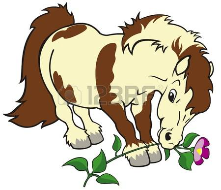 Miniature Horse Images & Stock Pictures. Royalty Free Miniature.