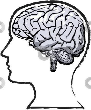 head and brain clipart #2