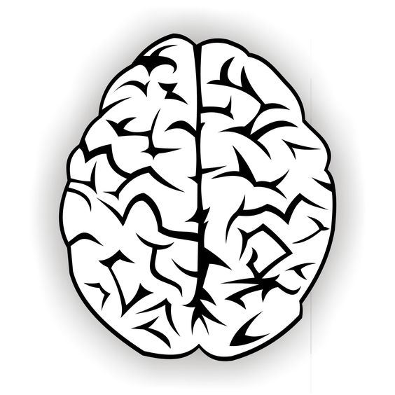 Brain clip art to use with Growth Mindset Bulletin Board.