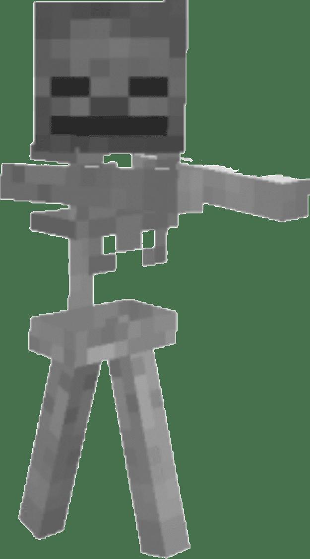 Minecraft Glogster Skeleton Game.