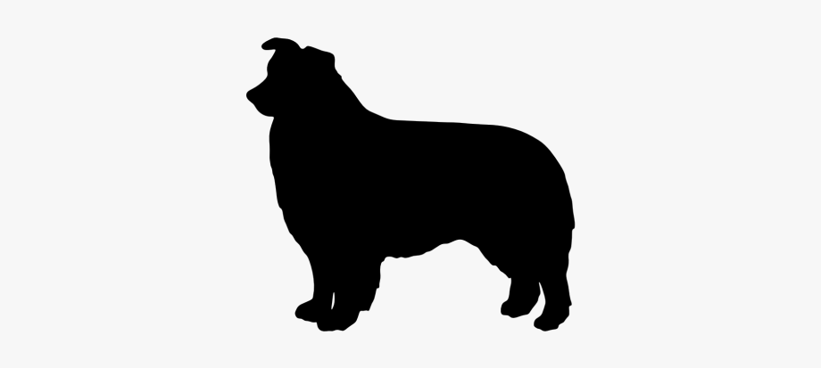 Australian Cattle Dog Silhouette At Getdrawings.