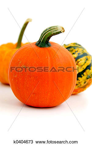 Stock Photo of Mini pumpkin k0404673.