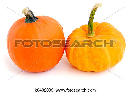Stock Photo of Mini pumpkin k0402003.