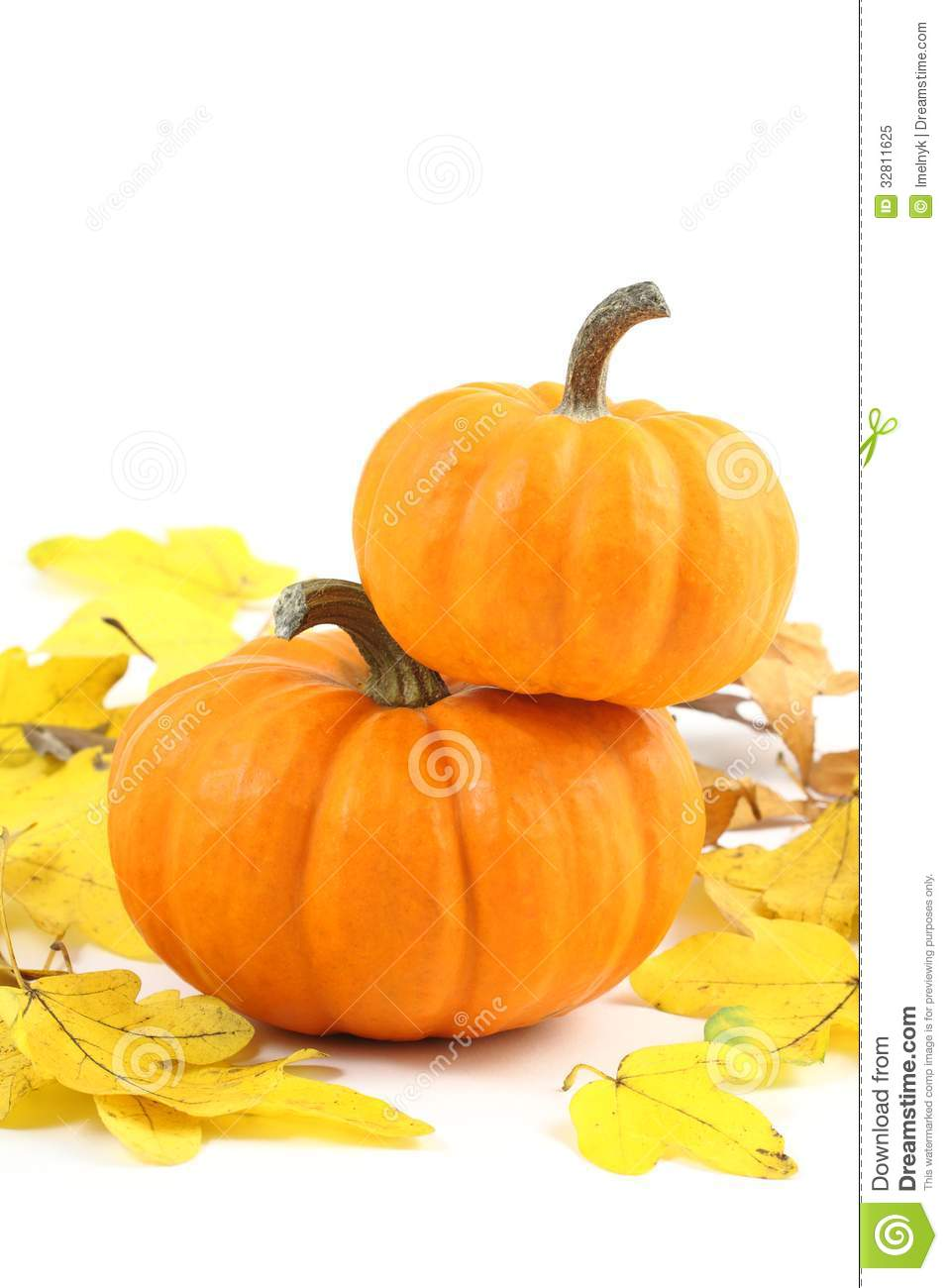 Two Stacked Mini Pumpkins On Yellow Fall Leaves Royalty Free Stock.