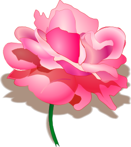 Gallery For > Light Pink Mini Rose Clipart.