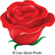 Miniature rose Clipart and Stock Illustrations. 33 Miniature rose.