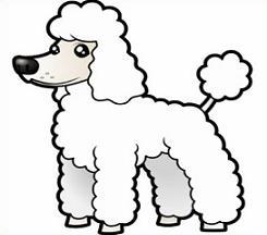 Free line clipart poodle dog.