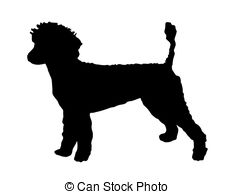 Poodle Clipart and Stock Illustrations. 1,371 Poodle vector EPS.