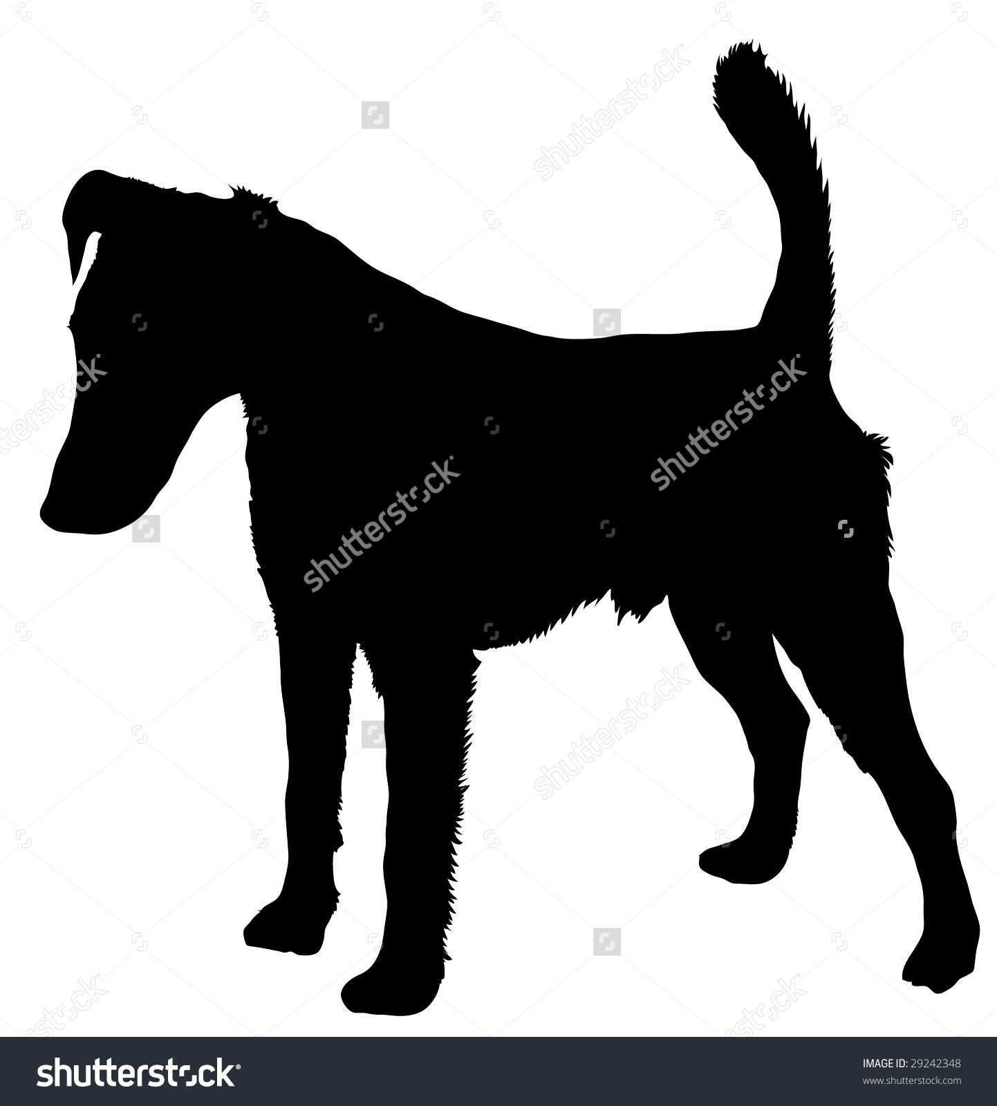 Silhouette Dog Breed Smooth Fox Terrier Stock Vector 29242348.