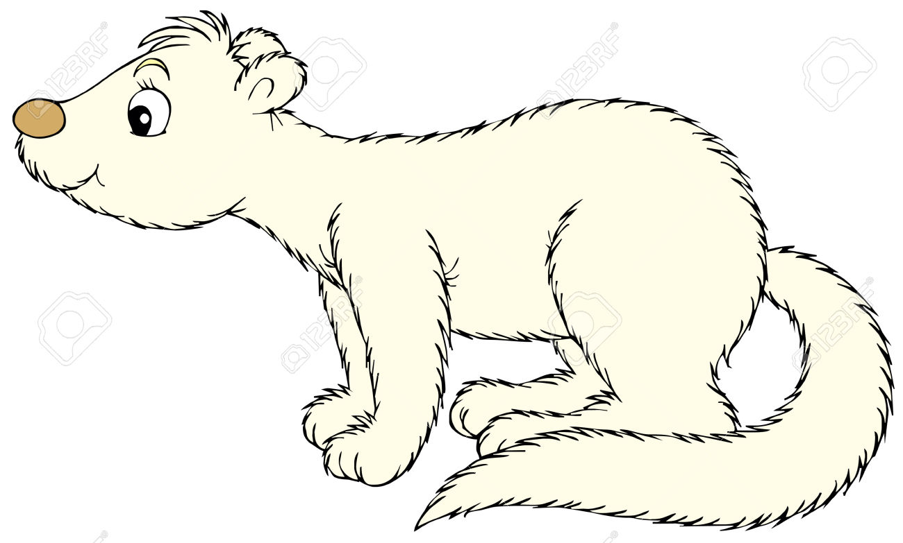 0 mink clipart.