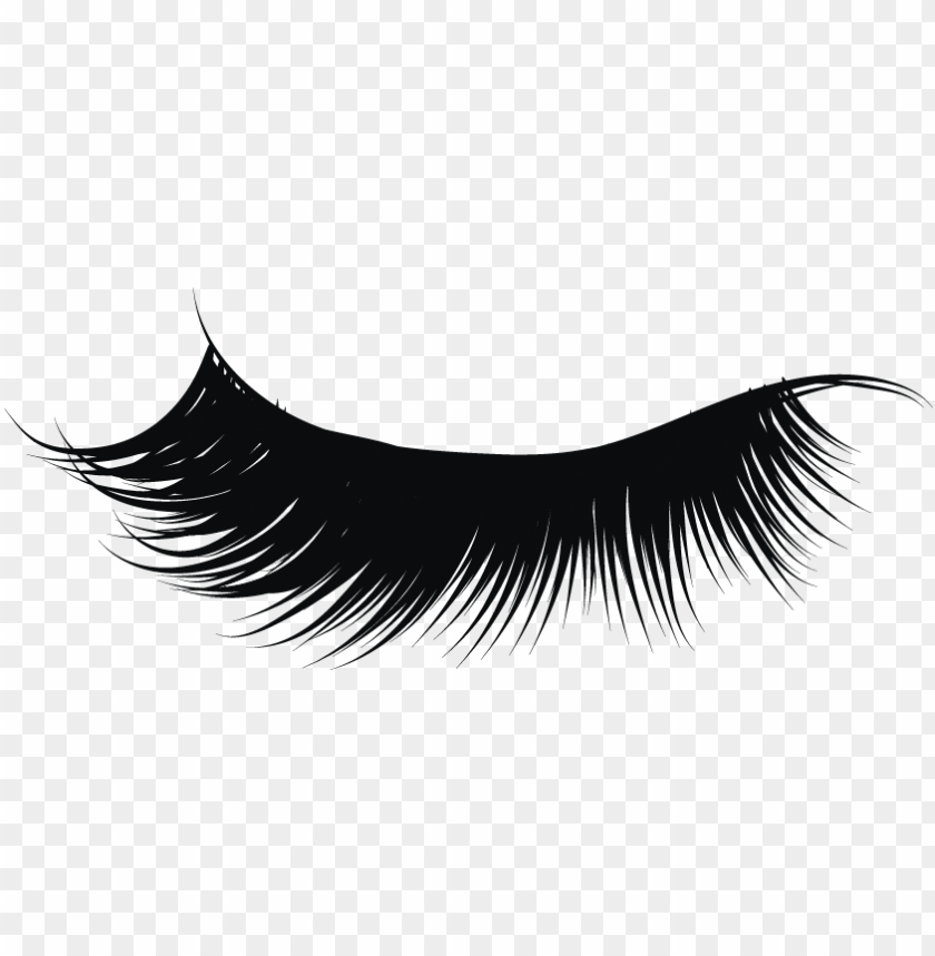 transparent download eyelashes clipart png.