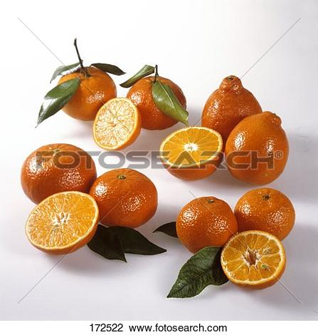 Stock Photo of Citrus fruits (clemenvilla, tangelo, clementine.