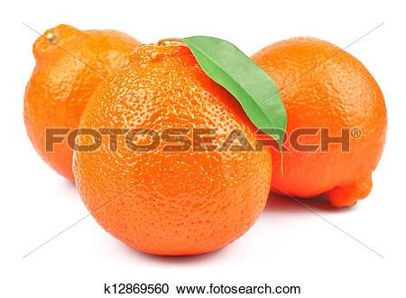 Stock Photography of Sweet oranges fruits( minneola) k12869560.