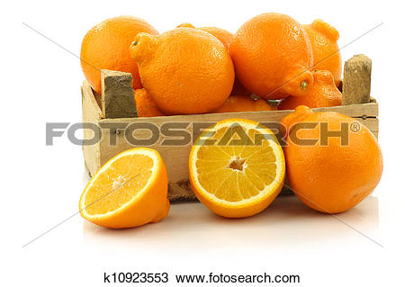 Stock Photo of colorful Minneola tangelo fruit k10923553.