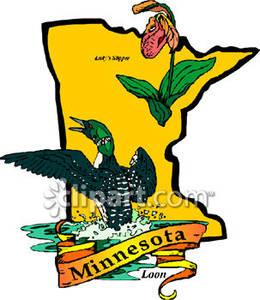 Minnesota Loon Clipart.