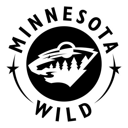 Minnesota Wild Team Formation.