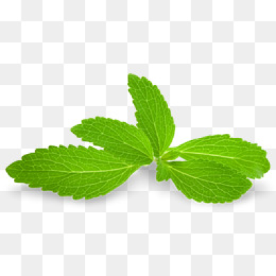 Download Free png Mint Leaves PNG Images.