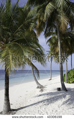 Ari Atoll Stock Photos, Royalty.