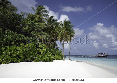 Mirihi Stock Photos, Images, & Pictures.