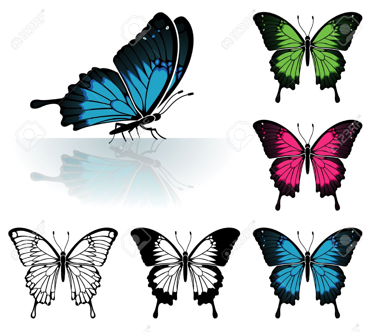 Collect Many Coloured Butterfly With A Mirror Reflection, Element.