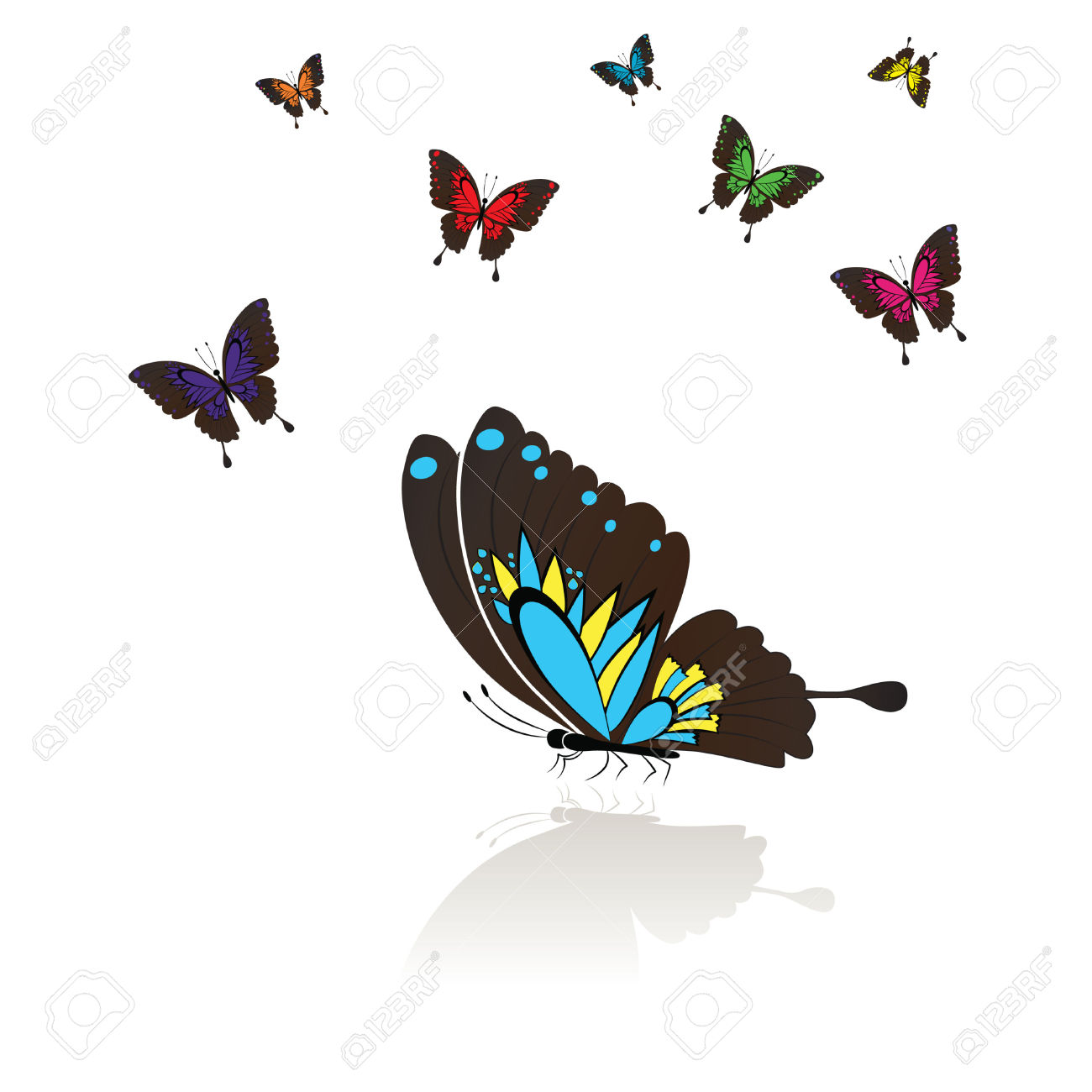 Collect Of Many Colored Butterflies With A Mirror Reflection.