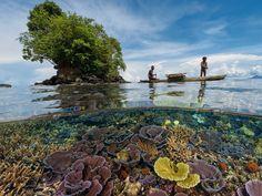Papua New Guinea landscapes.