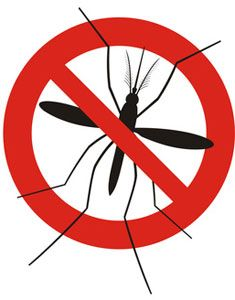 1000+ ideas about Mosquito Misting System on Pinterest.