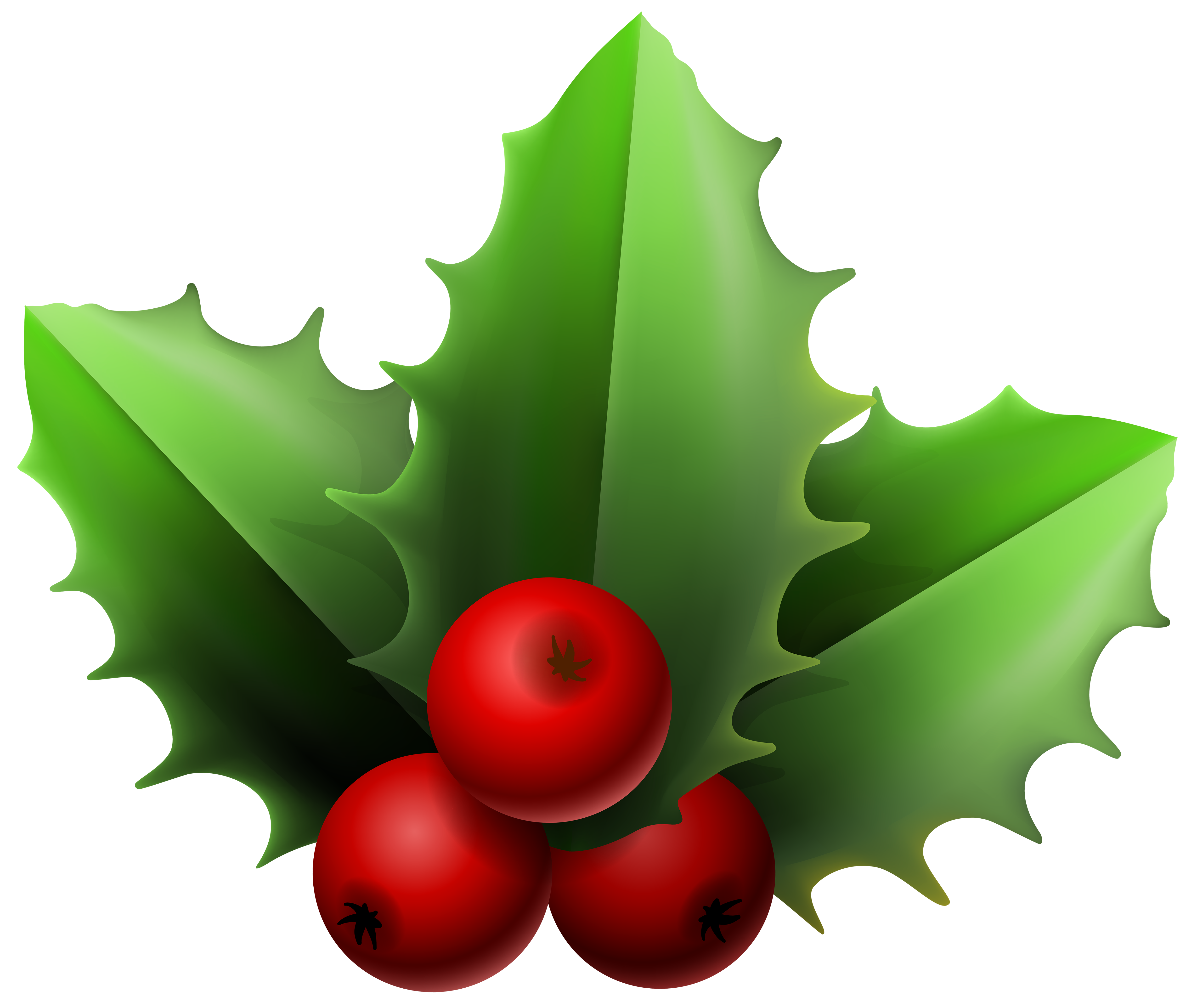 Christmas Mistletoe PNG Clipart Image.
