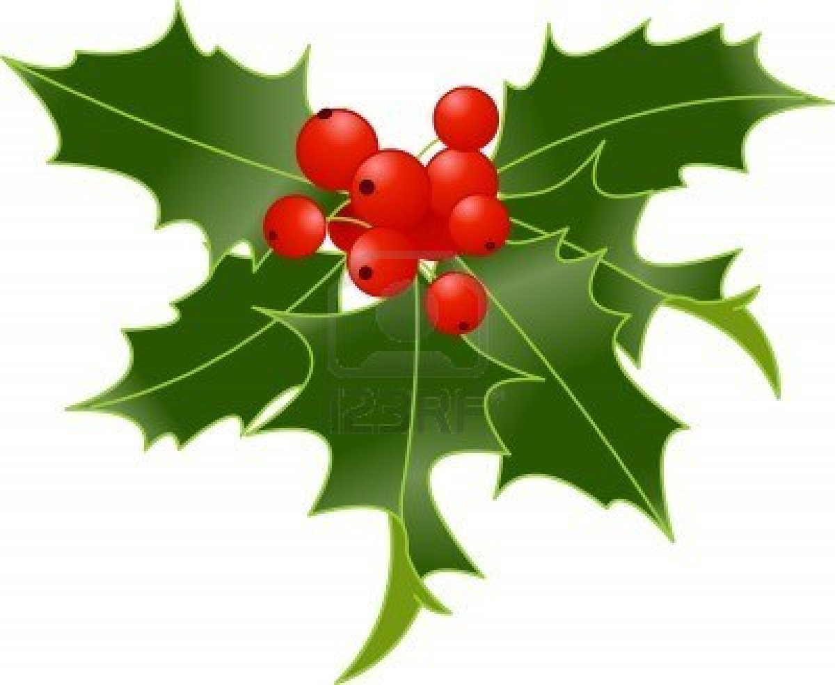 Holly and berries clip art.