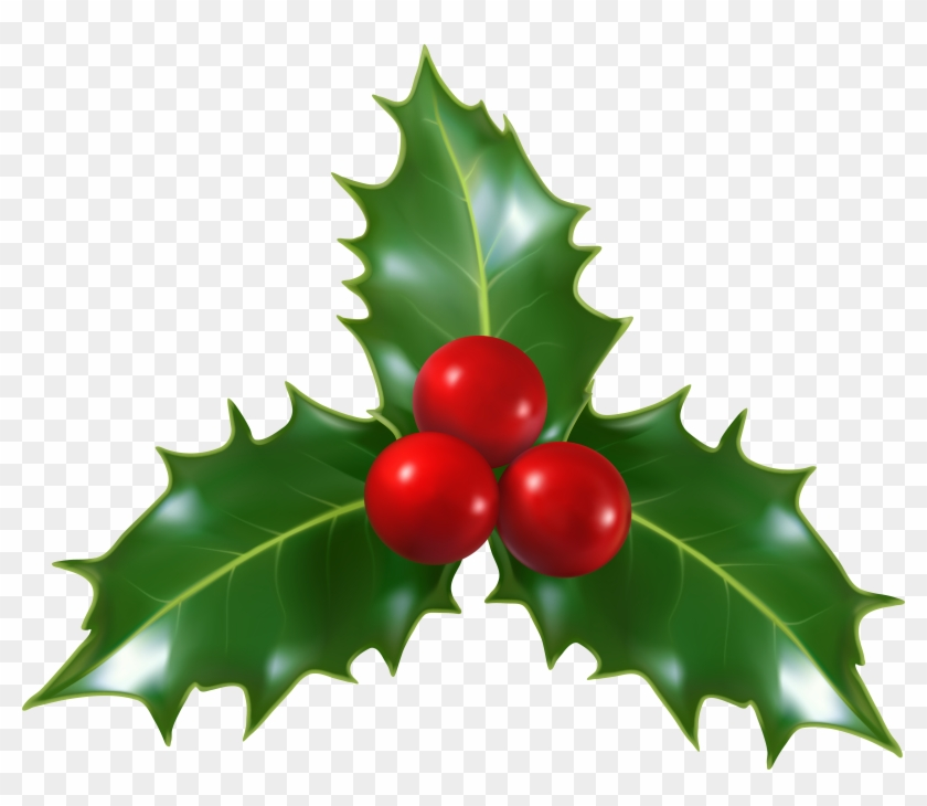Download Free png Mistletoe Png Free Transparent PNG Clipart.