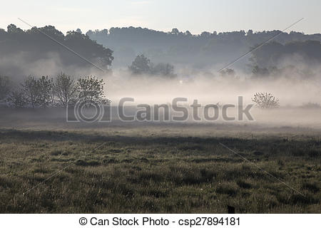 Pictures of misty morning in rural Ohio.
