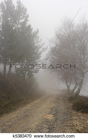 Stock Photography of High mountain road in a misty morning.