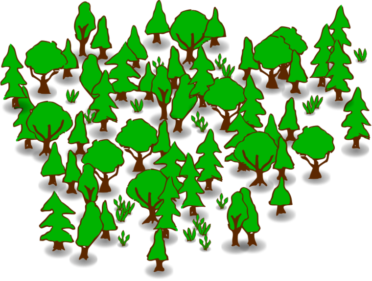 Forest map clipart.