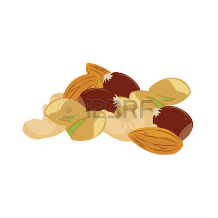 512 Mixed Nuts Stock Vector Illustration And Royalty Free Mixed.