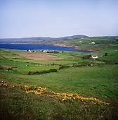 "Stock Photograph of ""Coastal landscape with bridge, Mizen Head."