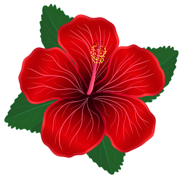 Moana flower clipart clipart images gallery for free.