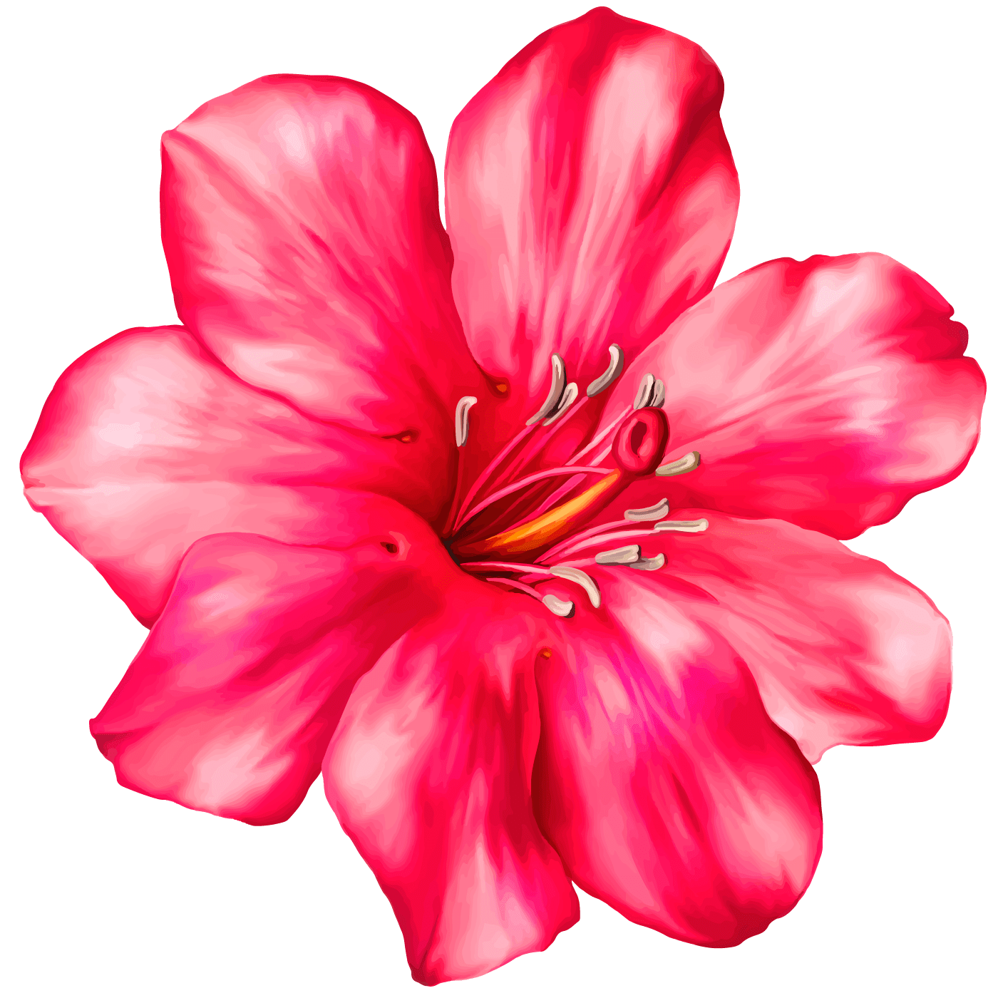Moana flower clipart 4 » Clipart Portal.