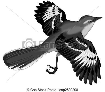 Mockingbird Illustrations and Clip Art. 64 Mockingbird royalty.