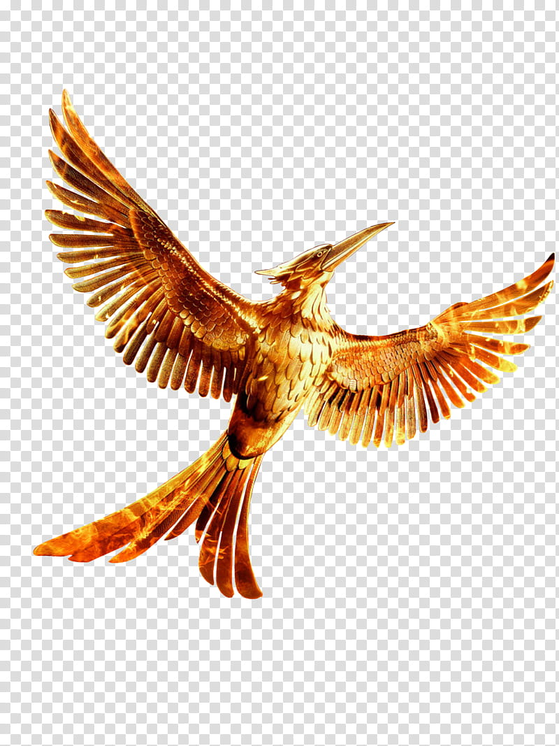 The Hunger Games Mockingjay Part Mockingjay, gold bird.