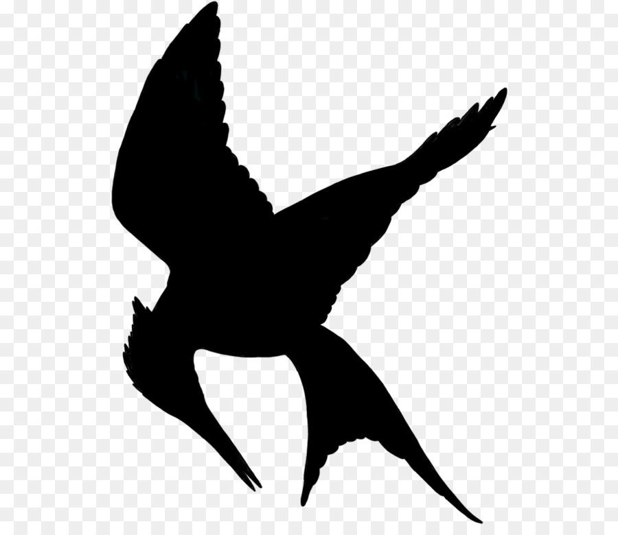 Mockingjay Bird.